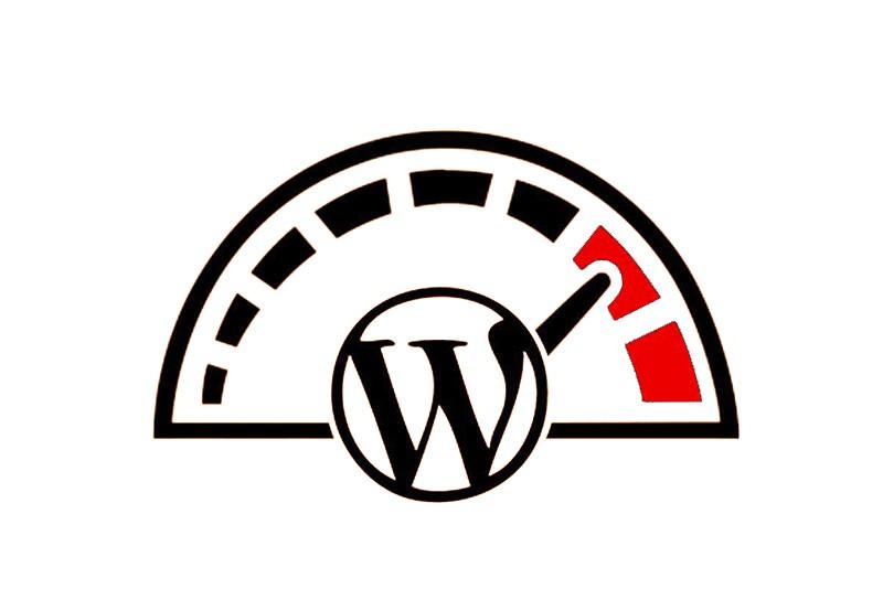 ottimizzazione wordpress vicenza